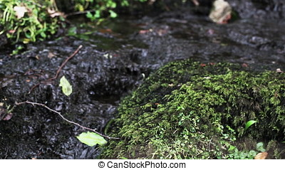 Stream and Mossy Rocks