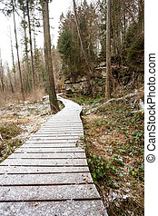 An wooden walkway - In Luxembourg in the woods there is a...