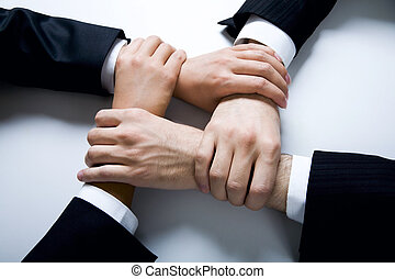 Harmony - Isolated on white four crossed human hands in...