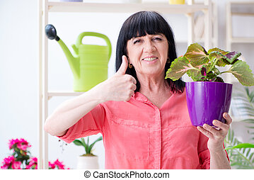 Woman florist working in the flower shop