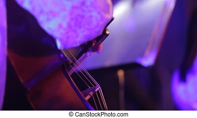 Musician plays the violin at the concert