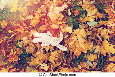 toy rabbit in fallen autumn leaves