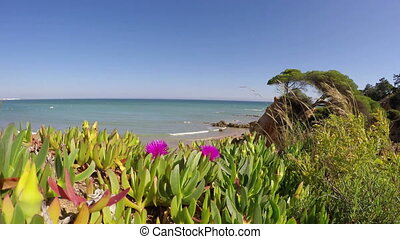 Wonderful landscape view with flowers and sea beach Olhos de...