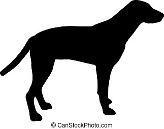 Black and white silhouette of a dog. Pointer or Pinscher.