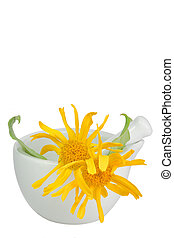 Arnica in a mortar - Mortar and pestle with arnica blossoms...