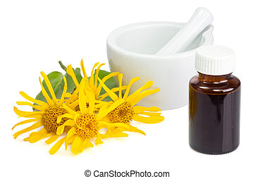 Arnica tincture - Arnica blossoms and mortar with little...