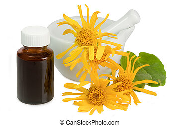 Tincture of arnica - Arnica blossoms and mortar with little...