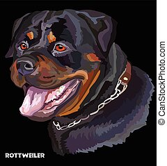 Rottweiler colorful vector portrait - Colored portrait of...