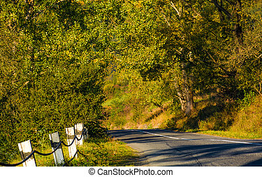 countryside road through forest. lovely early autumn...