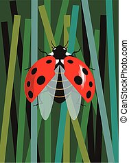 Ladybug spreads its wings against the background of grass...