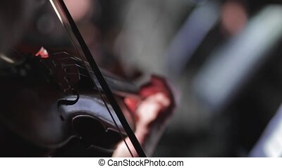 Musicant plays the violin at the concert