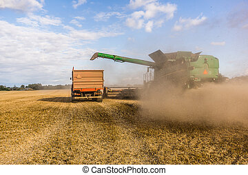 Big combine at a yellow field