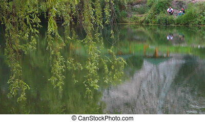 Still Waters Run Deep - View from under the shade of a...