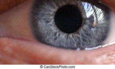Macro shot of male human blue eye blinking in slow motion....