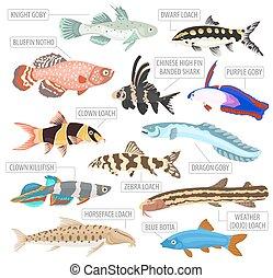 Freshwater aquarium fishes breeds icon set flat style...
