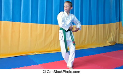 Karate Boy - A young boy doing karate moves