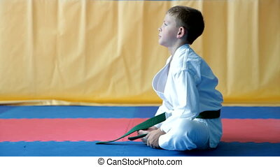 Karate Boy - A young boy doing karate moves.