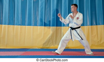 Karate fight - Martial artist doing a kick