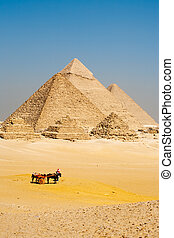 Egyptian Tourists Pyramids Giza - A group of unrecognizable...