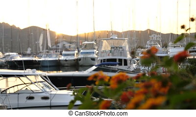 Backlit view of boats docked in Porto Rotondo at the sunset