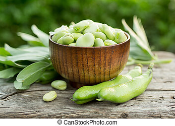 Broad beans or fava beans in a bowl. Organic diet and vegan...