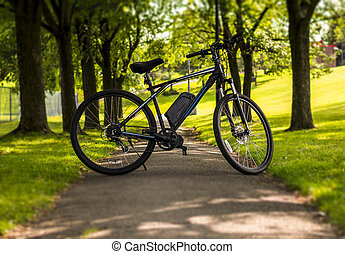 Electric bicycle in a park on a sunny day
