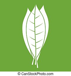 Culinary bay leaves icon green