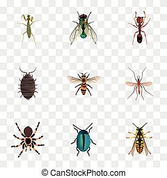 Realistic Grasshopper, Wasp, Bee And Other Vector Elements. Set Of Insect Realistic Symbols Also Includes Blue, Mantis, Jewel Objects.