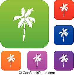 Palm tree set collection