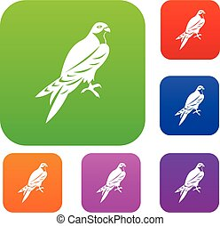 Falcon set collection - Falcon set icon in different colors...
