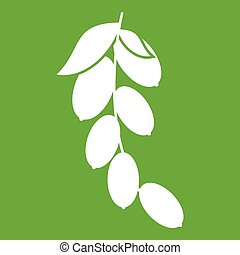 Branch of cornel or dogwood berries icon green