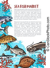Vector poster of fish catch for sea food maket - Sea fish...
