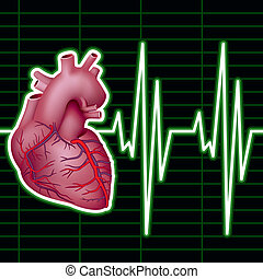 Heart Monitor - Cardiological Monitor (ECG). Vector...