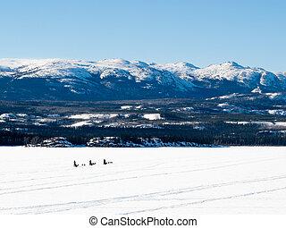 Sled dog musher on Lake Laberge YT Canada - Sled dog teams...
