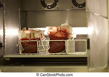 Blood Fridge in hospital - Blood cold storage unit in a...