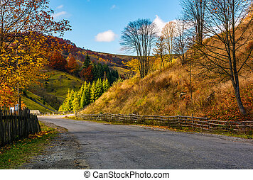 fences along the road in picturesque rural area. gorgeous...