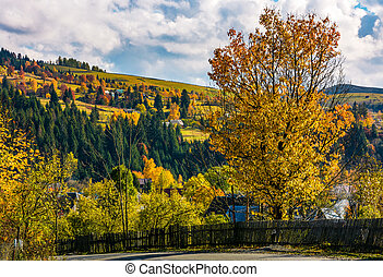 fence and tree by the road in village - wooden fence and...