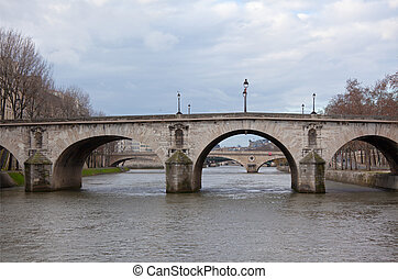Seine River with Bridges, Paris in gloomy winter day