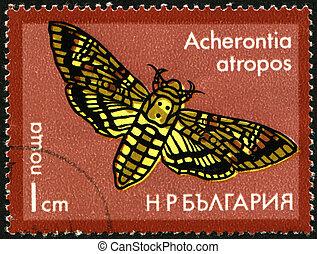Butterfly Acherontia atropos - BULGARIA - CIRCA 1975: A...