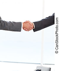 Close up of two businessmen shaking their hands standing in...