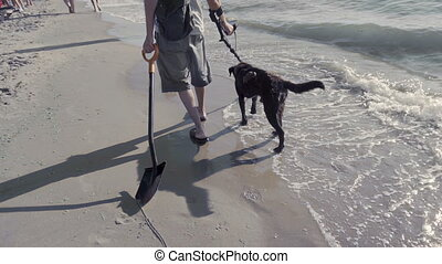Man with Metal Detector on the Beach - Man walking with dog...