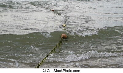 Bouys Rope in Sea - Bouys rope with seaweeds in sea waves,...