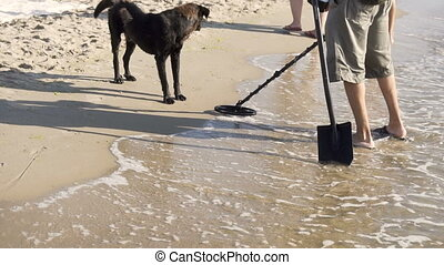 Man with Metal Detector on the Beach - Man scaning beach...