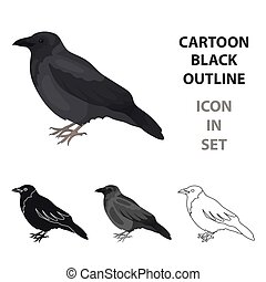 Crow icon in cartoon style isolated on white background....