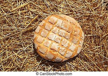 Bread bun round on golden wheat straw