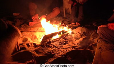Group of Friends Sitting near Campfire at Night and Hanging...