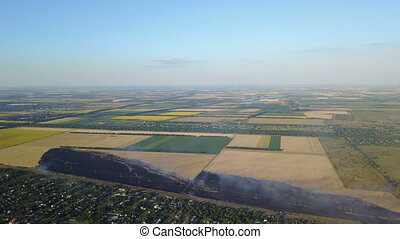 Aerial View Of Agricultural Field Burning, Yellow Grass In...