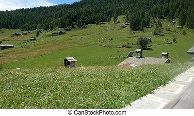 Alpine pasture in Valtellina