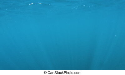 Blue underwater showing surface - A wide shot of the...