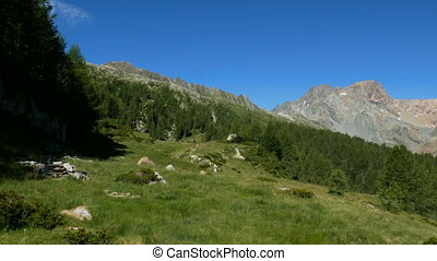 Alpine landscape with tall mountains and pasture in summer in Valmalenco